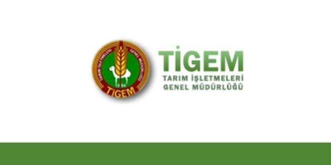 Tarım İşletmeleri Genel Müdürlüğü 100 Daimi İşçi Alımı Yapacak
